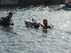 Diving08172013